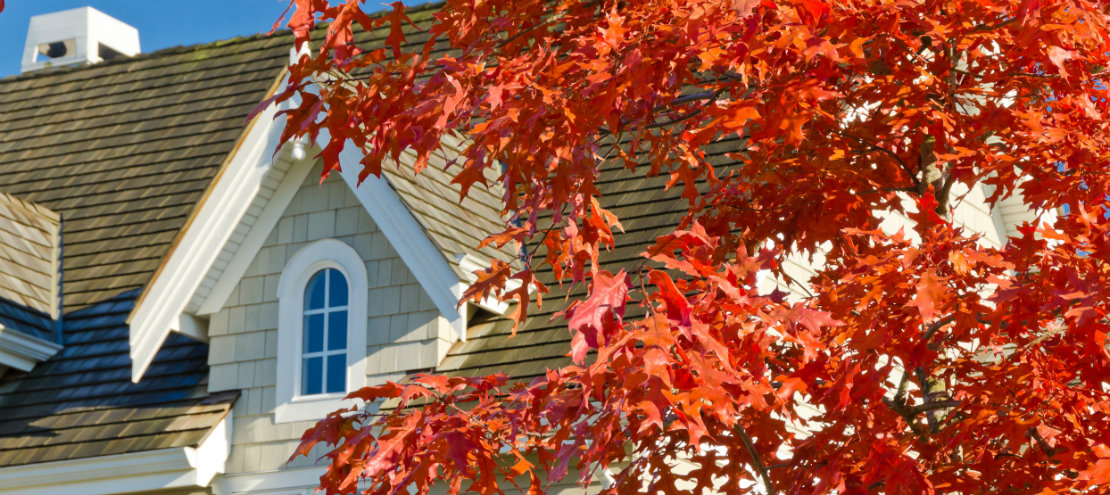 Fall red leaves means its time for a heater check